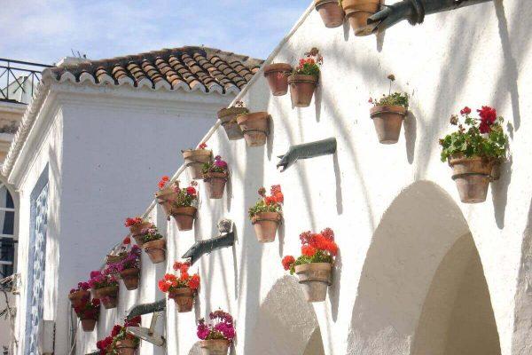 solservice - en mur med blomkrukor