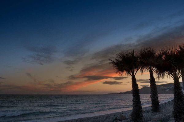 solservice - strand med palmer i solnedgång